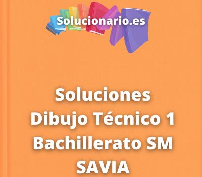 Soluciones Dibujo Técnico 1 Bachillerato SM SAVIA